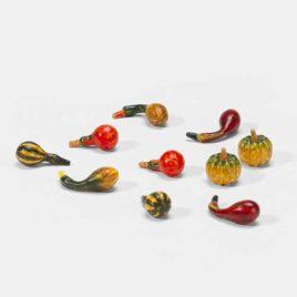 Harvest Gourds $7.50 SALE $4.00