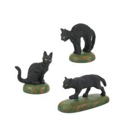 A CLOWDER OF BLACK CATS